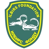 Logo « Ilbirs Foundation » {JPEG}